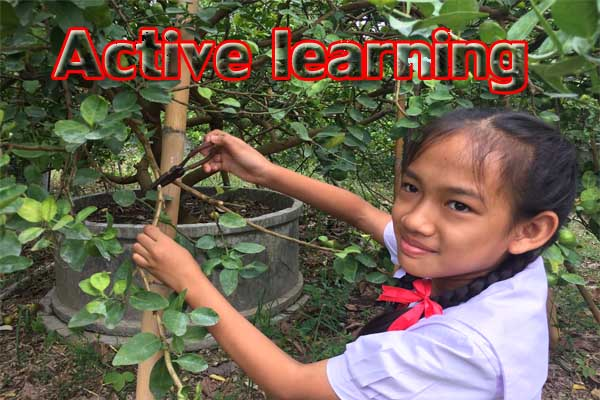 Active Learning : Passive Learning